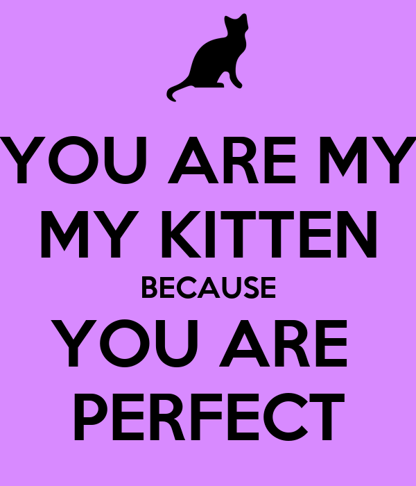 YOU ARE MY MY KITTEN BECAUSE YOU ARE  PERFECT