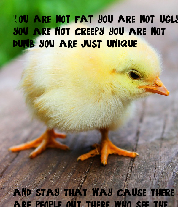 You are not fat you are not ugly  you are not creepy you are not dumb you are just unique             and stay that way cause there are people out there who see