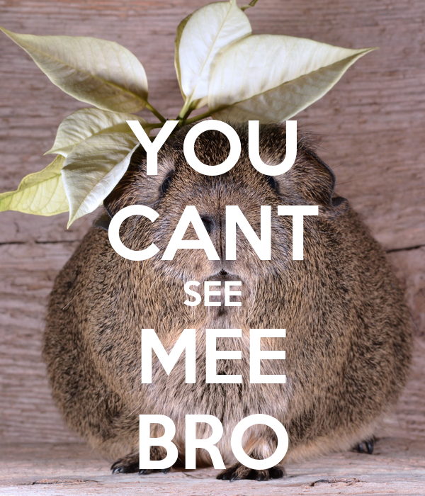 YOU CANT SEE MEE BRO