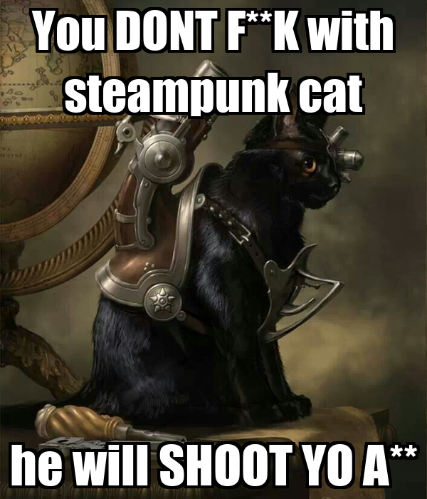 You DONT F**K with steampunk cat he will SHOOT YO A**