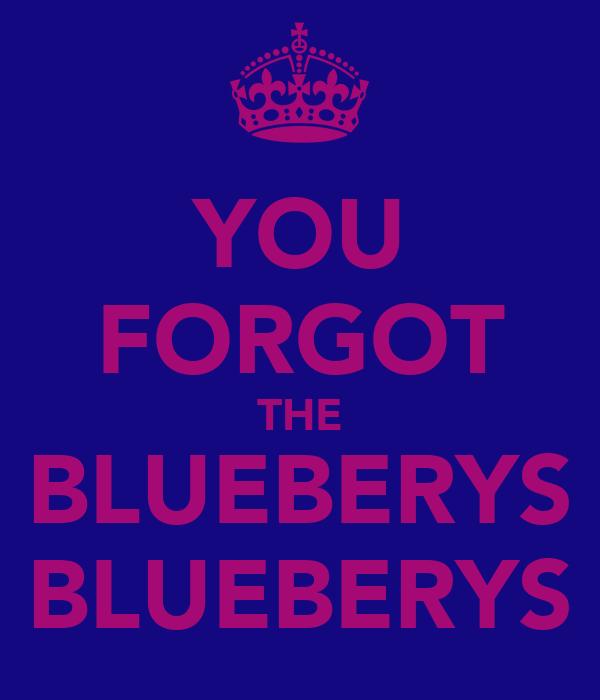 YOU FORGOT THE BLUEBERYS BLUEBERYS
