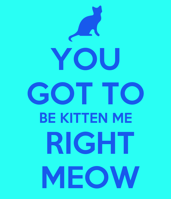 YOU GOT TO BE KITTEN ME  RIGHT  MEOW