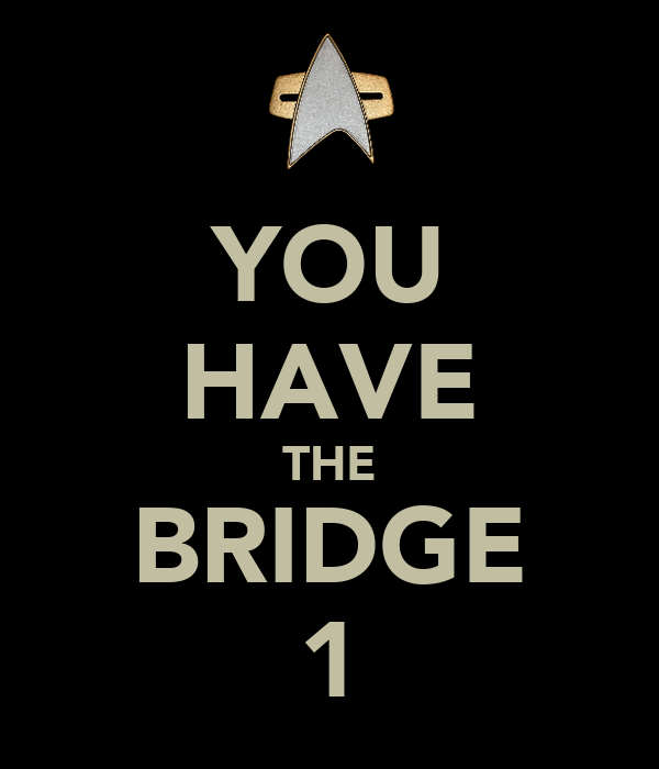 YOU HAVE THE BRIDGE 1