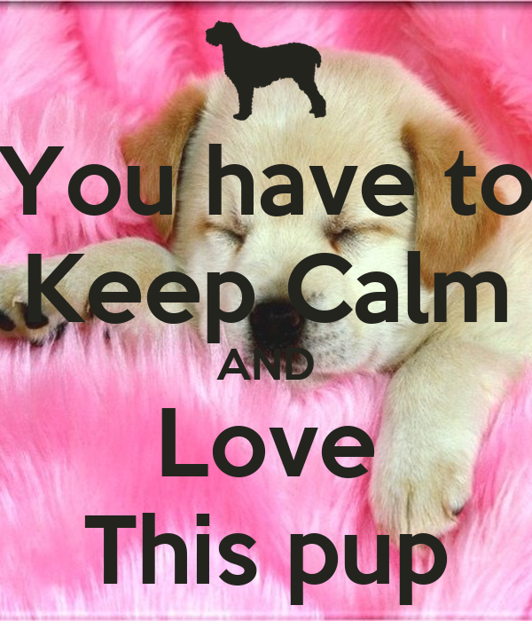 You have to Keep Calm AND Love This pup