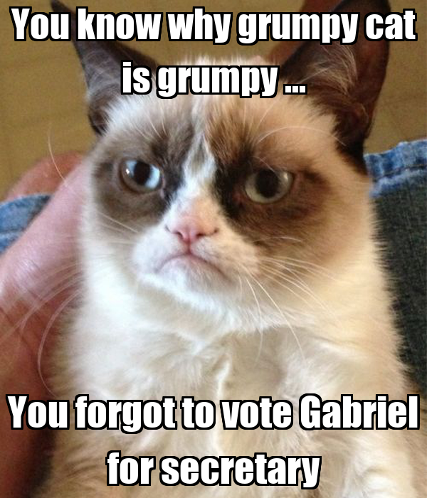 You know why grumpy cat is grumpy ... You forgot to vote Gabriel for secretary
