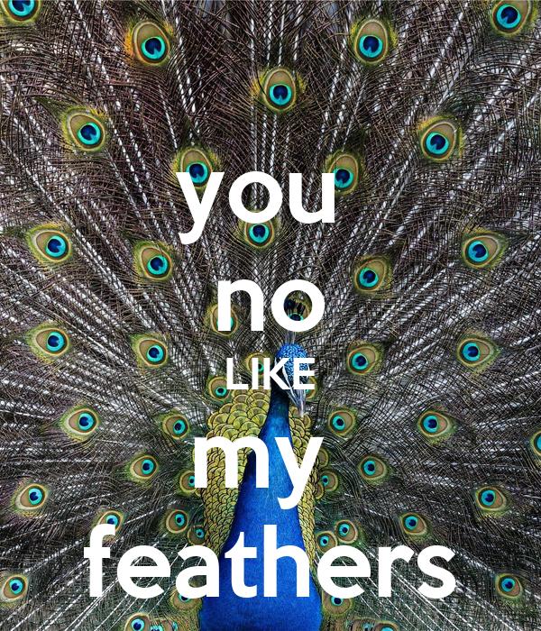 you  no LIKE my  feathers
