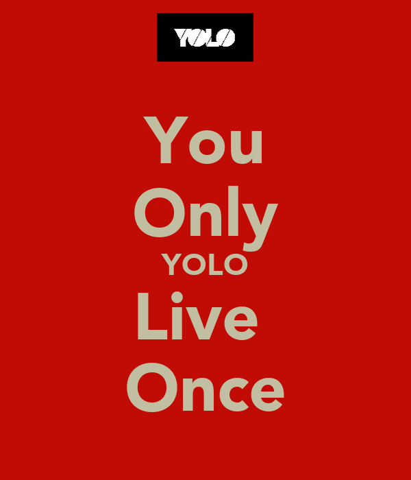 You Only YOLO Live  Once