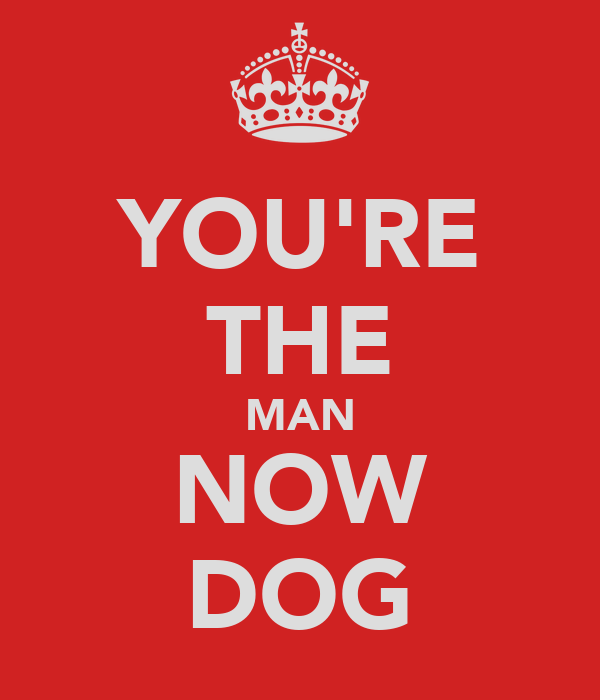 YOU'RE THE MAN NOW DOG