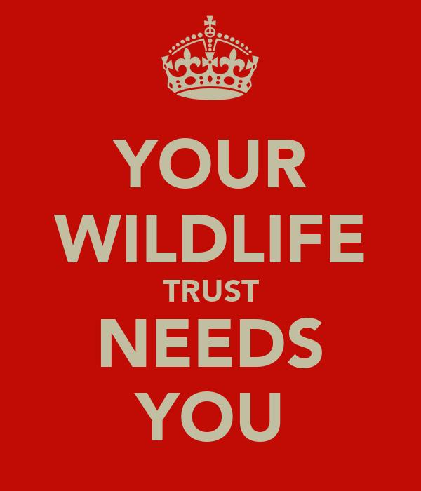 YOUR WILDLIFE TRUST NEEDS YOU