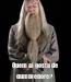 Poster:  Quem ai gosta de dumbledore?
