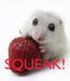 Poster:    SQUEAK!