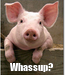 Poster:  Whassup?