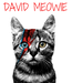 Poster: DAVID MEOWIE