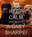 Poster: KEEP CALM AND ADOPT A BABY SHARPEI