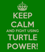 Poster: KEEP CALM AND FIGHT USING TURTLE POWER!