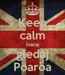 Poster: Keep calm Ivana gledaj Poaroa