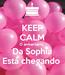 Poster: KEEP CALM O aniversário  Da Sophia Está chegando