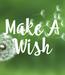 Poster: Make A Wish