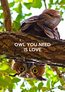 Poster: OWL YOU NEED IS LOVE