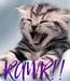 Poster: RAWR!!