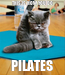 Poster: THIS IS HOW YOU DO PILATES