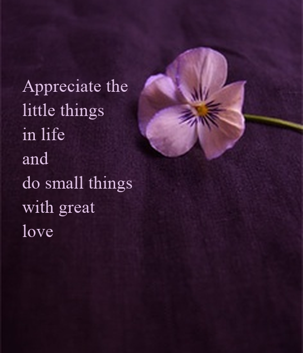 appreciating the little things in life essay Than small, that stretching to the limit is better than taking it easy, that be the best you can be trumps appreciating who you are, you're simply not being fair to yourself begin with enjoying the little things in life why what's so great about the little things in life.