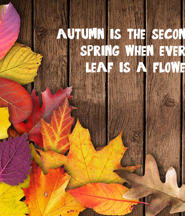 autumn is the second spring when every leaf is a flower ...