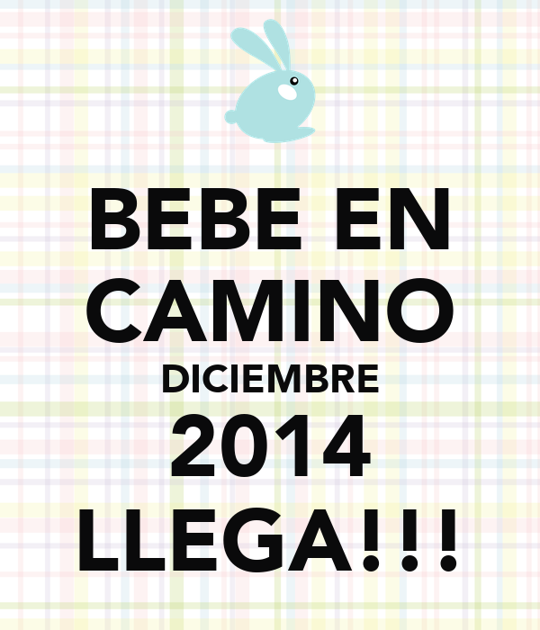 Bebe en camino diciembre 2014 llega poster liutusean - Bebe en camino ...