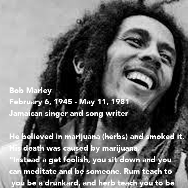 the role of the bob marley in the spread of the rastafarian culture The rastafari movement has spread throughout much of the world, largely  by  reggae music—most notably, that of jamaican singer/songwriter bob marley   and emphasize the paramount importance of human dignity and self-respect.