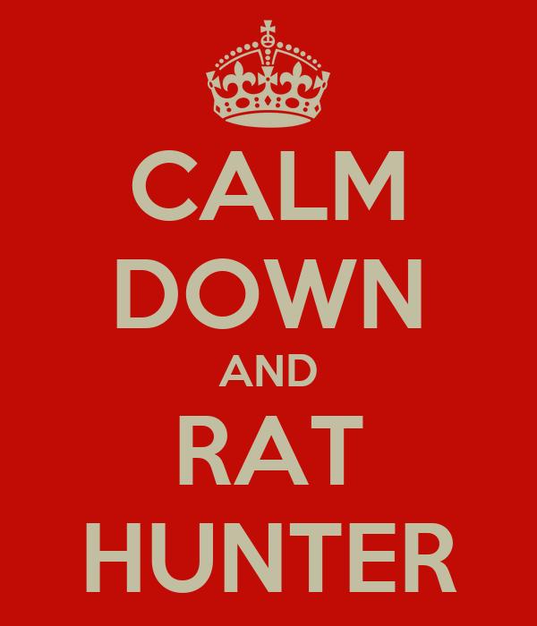 Rat Hunter скачать торрент - фото 5