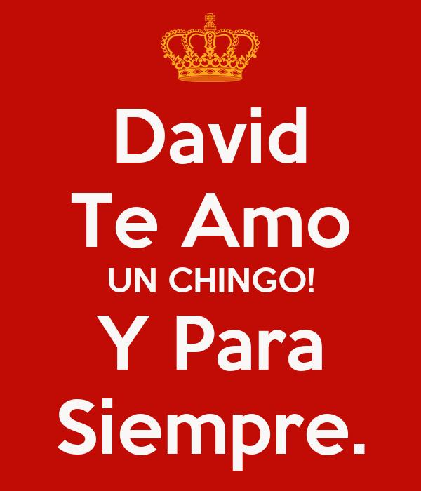 David Te Amo UN CHINGO! Y Para Siempre. Poster