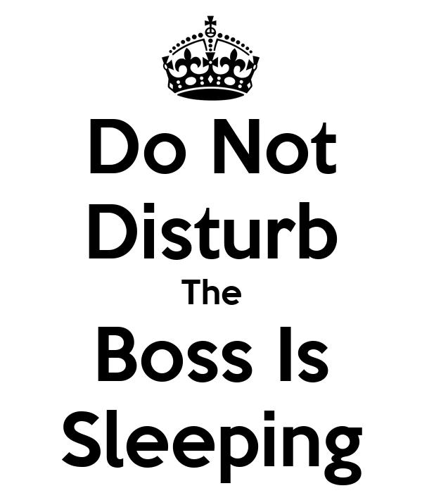 do not disturb the boss is sleeping poster stephanie