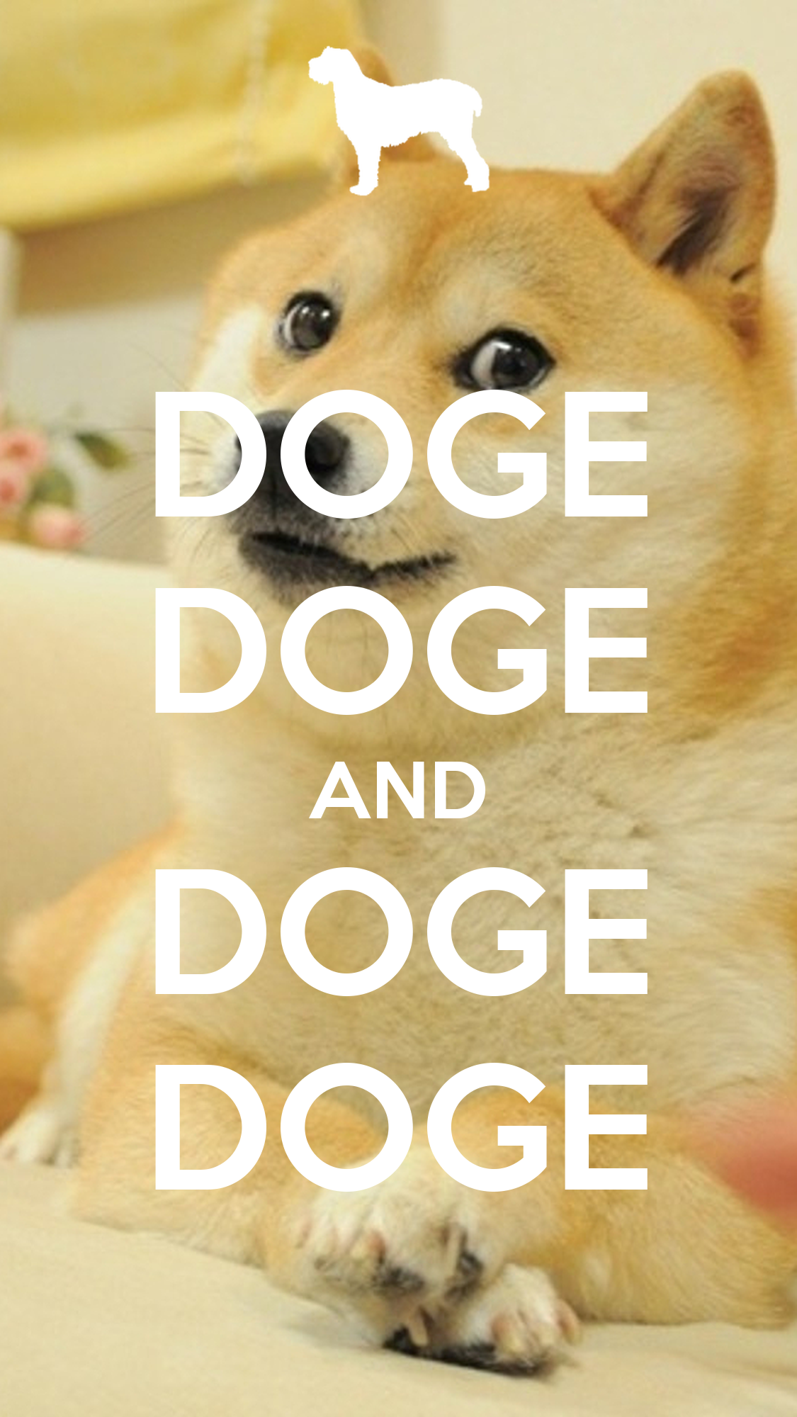 Doge, Wallpapers and iPhone on Pinterest