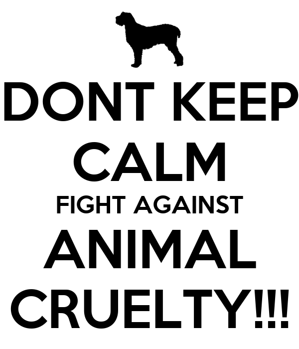 Image result for image of Animal cruelty