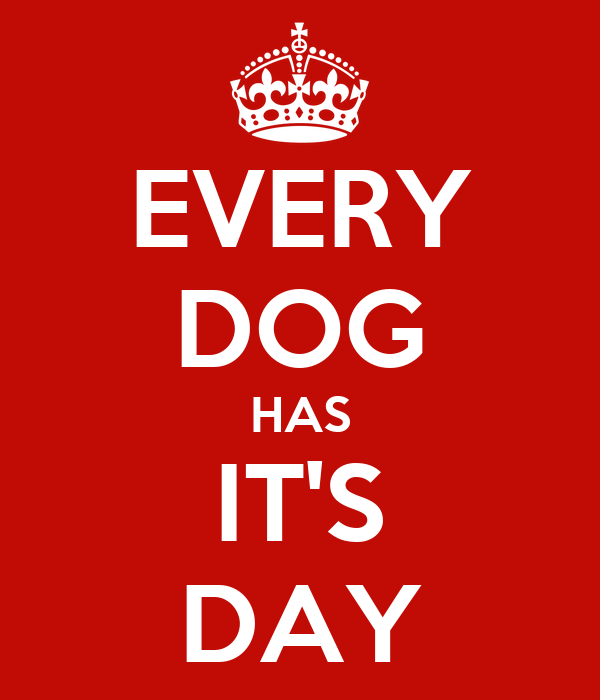 Every Dog Has Its Day Dog