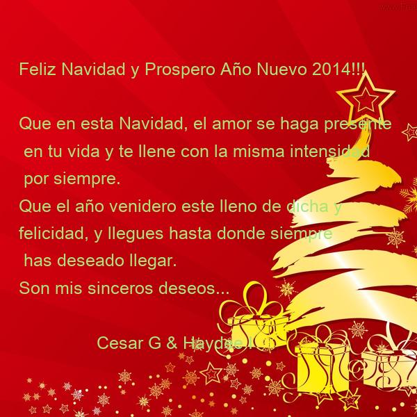 Feliz navidad y prospero a o nuevo 2014 que en esta - Dedicatorias para navidad y ano nuevo ...