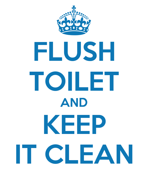 how to clean enamel toilet