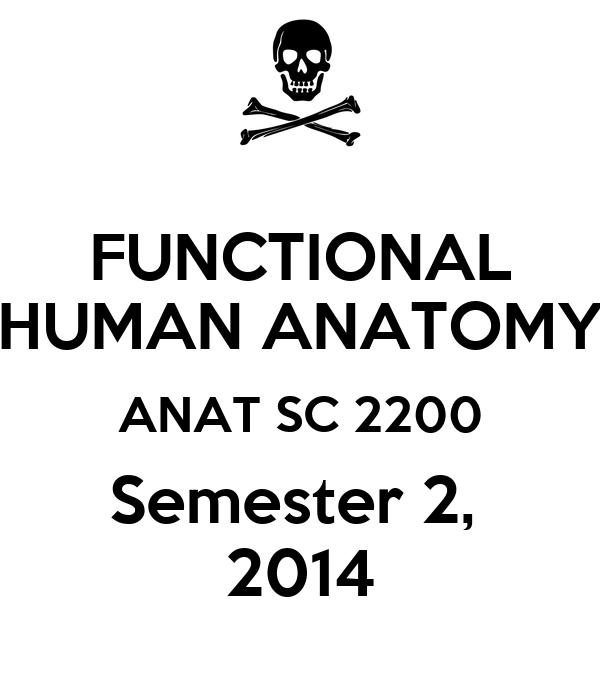 Functional Human Anatomy Anat Sc 2200 Semester 2 2014 Poster