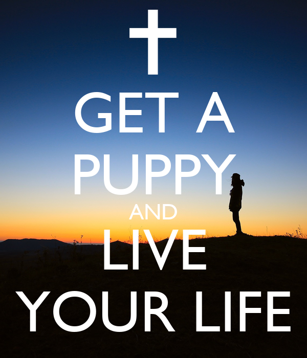 Get A Life: GET A PUPPY AND LIVE YOUR LIFE Poster