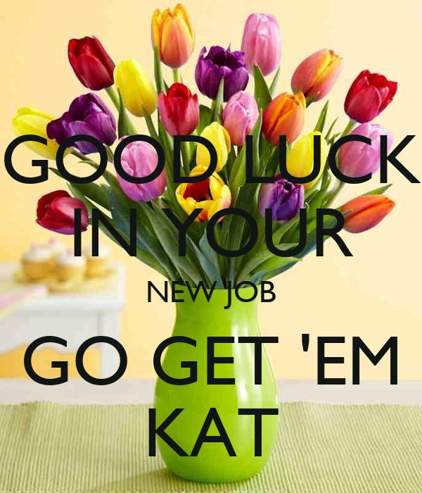 Good luck in your new job go get em kat poster susan keep calm o