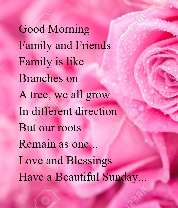 Good Morning Family And Friends Family Is Like Branches On A Tree