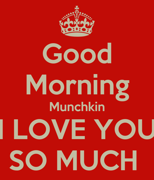 Good Morning Love You So Much : Good morning munchkin i love you so much keep calm and