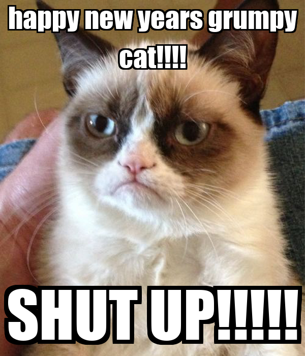 grumpy cat happy new year   28 images   rezclick painting
