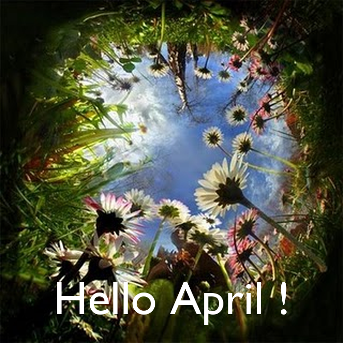 Hello April ! Poster  merkannighthawk  Keep Calm-o-Matic