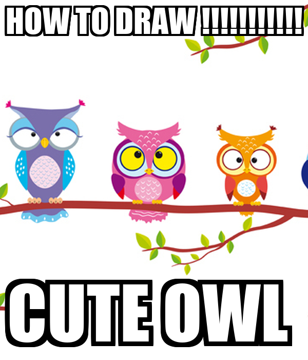 how to draw cute owls step by step