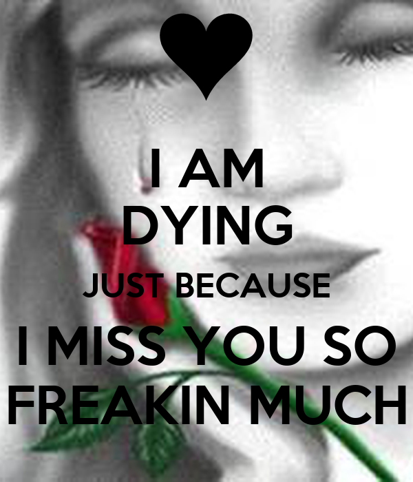 I AM DYING JUST BECAUSE I MISS YOU SO FREAKIN MUCH - i-am-dying-just-because-i-miss-you-so-freakin-much
