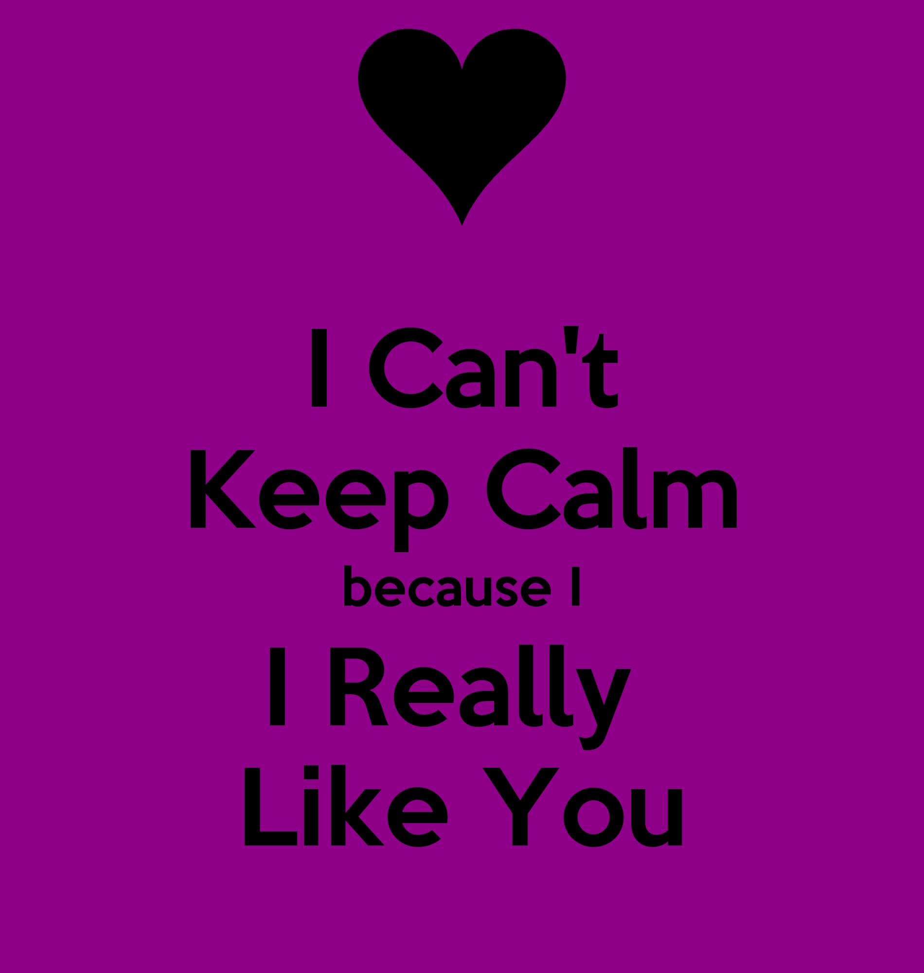 I Cant Keep Calm Because I I Really Like You Poster Sam Keep