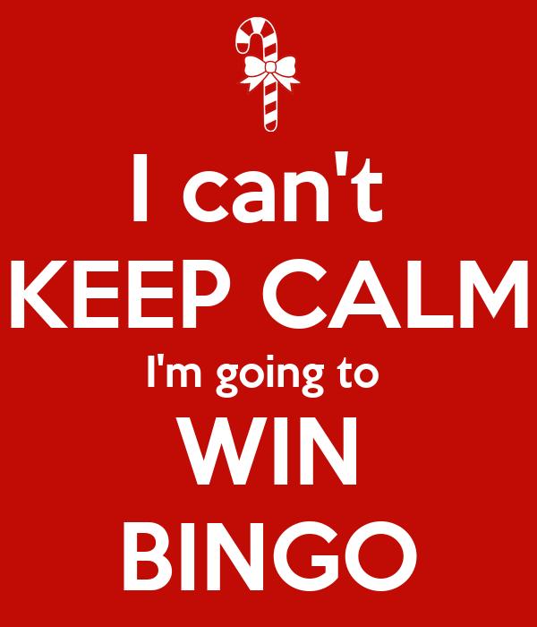 nobody cries at bingo pdf