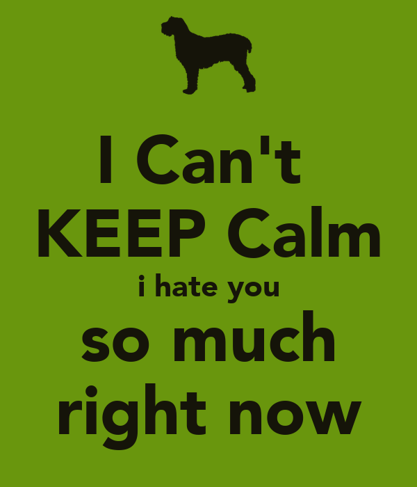 i cant keep calm i hate you so much right now poster