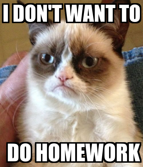 don t want to do homework